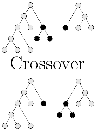 Function tree crossover